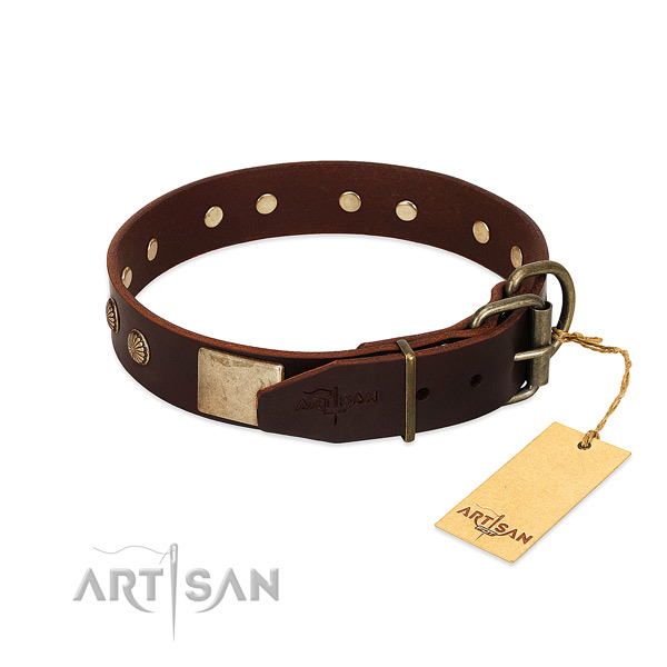 Rust resistant traditional buckle on handy use dog collar