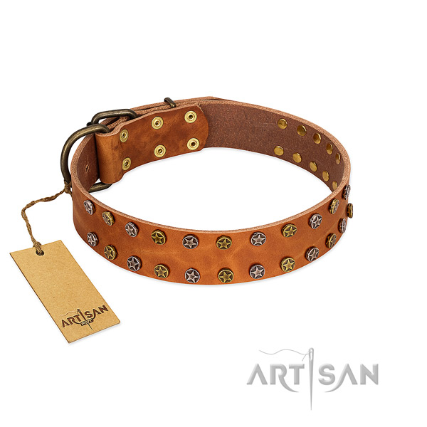 Fancy walking best quality natural leather dog collar with studs