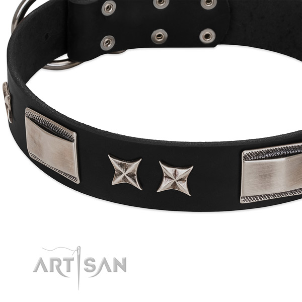 Quality genuine leather dog collar with reliable fittings