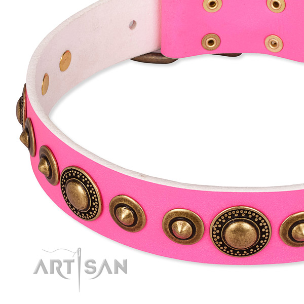 Soft leather dog collar crafted for your handsome dog