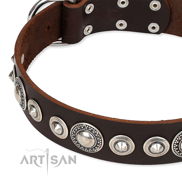 Easy wearing studded dog collar of strong full grain natural leather