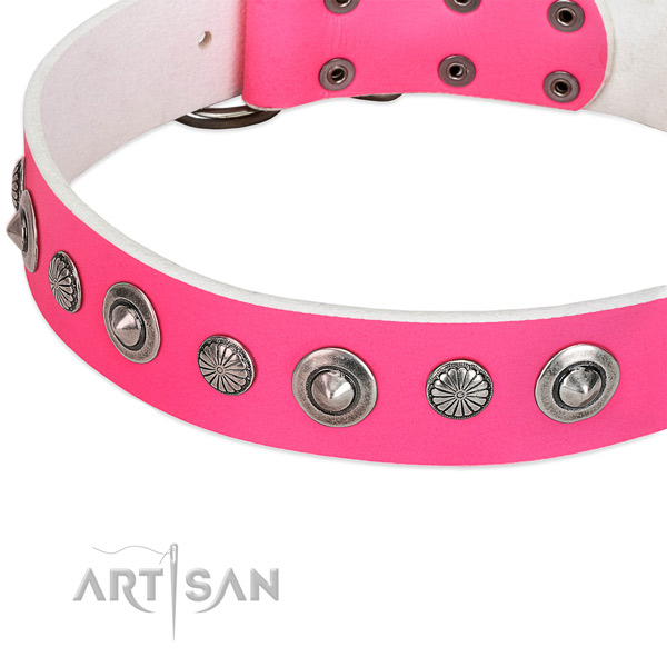 Natural leather collar with durable D-ring for your lovely canine