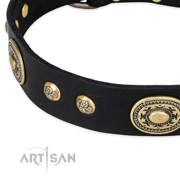Extraordinary genuine leather collar for your beautiful dog