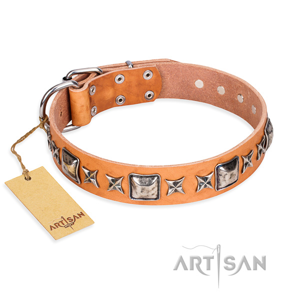 Walking dog collar of strong full grain genuine leather with adornments