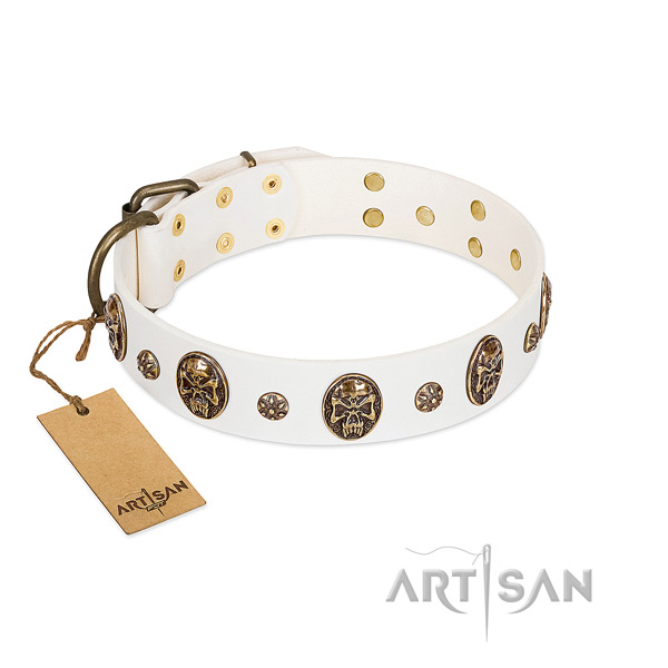 Studded full grain natural leather collar for your pet