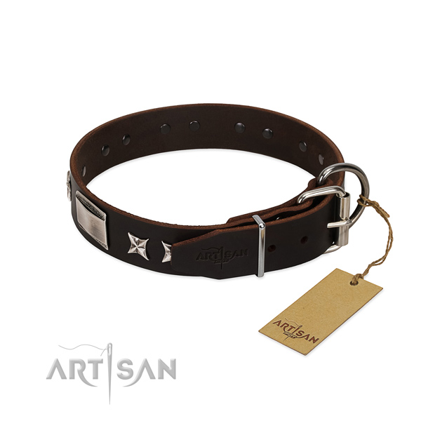 Trendy collar of full grain natural leather for your lovely dog
