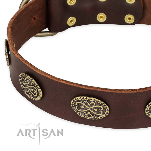 Stylish full grain natural leather collar for your lovely doggie