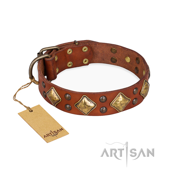 Easy wearing decorated dog collar with reliable buckle
