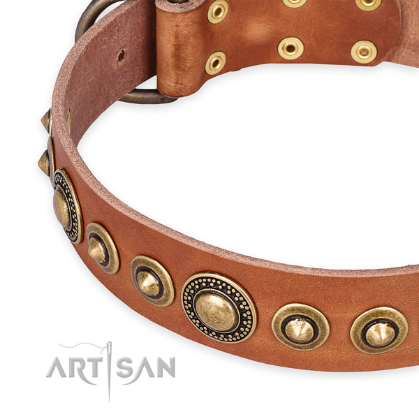 Reliable full grain leather dog collar handcrafted for your attractive pet