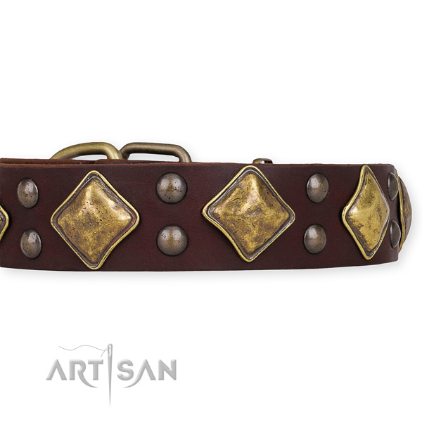Natural leather dog collar with exquisite corrosion proof studs