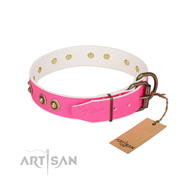 Full grain genuine leather dog collar with reliable fittings and studs