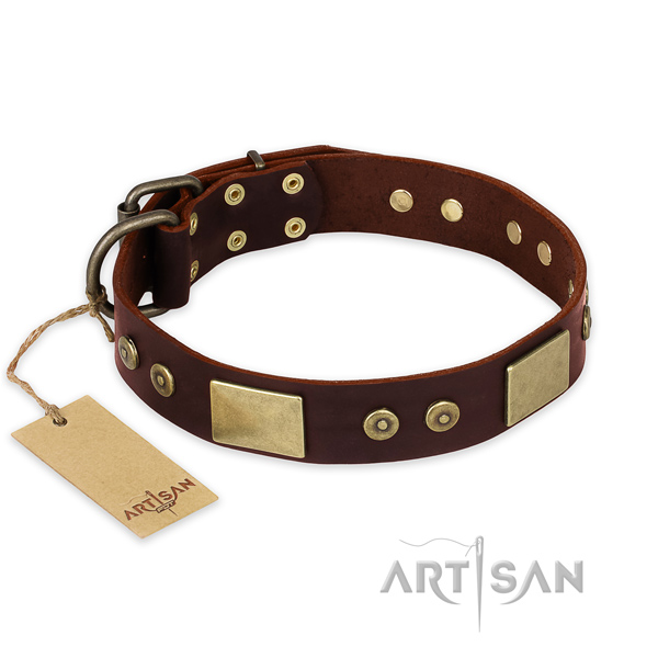 Exceptional full grain genuine leather dog collar for daily use