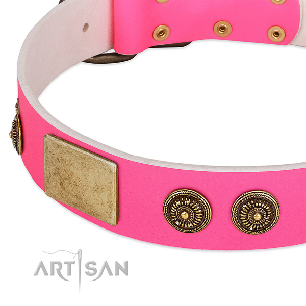 Stylish design dog collar handcrafted for your attractive pet