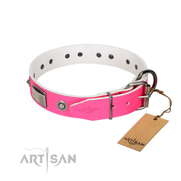 Fine quality dog collar of leather with embellishments