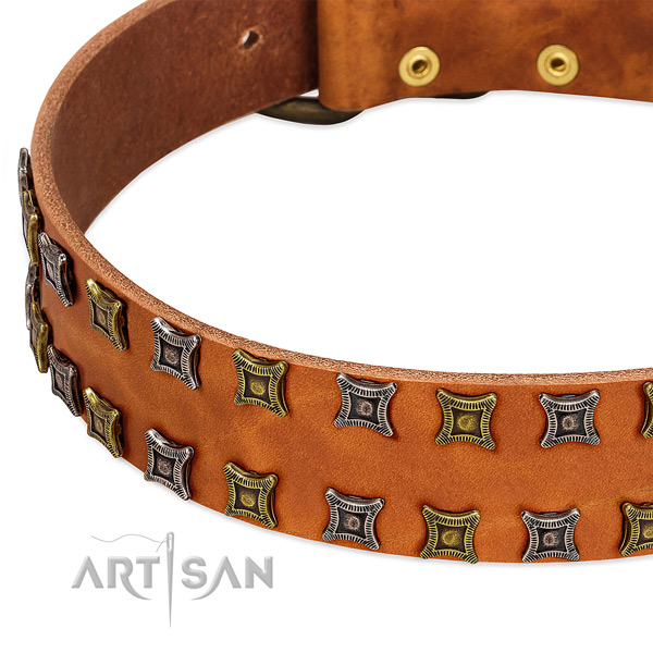 Top rate full grain genuine leather dog collar for your lovely pet