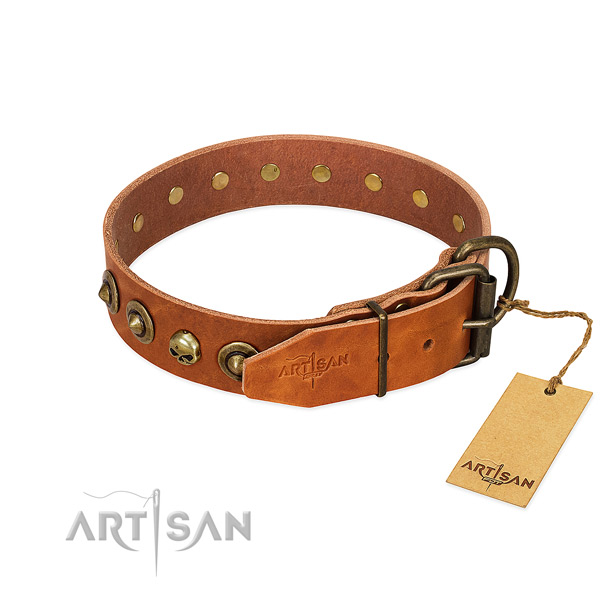 Full grain genuine leather collar with unusual embellishments for your four-legged friend