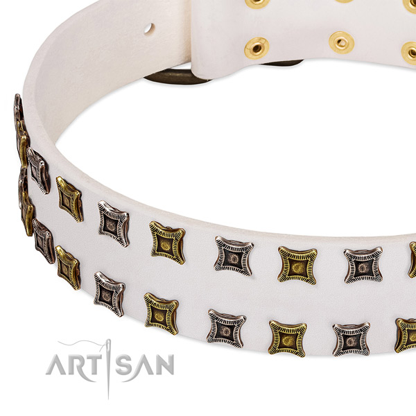 Full grain leather dog collar with studs for your lovely doggie