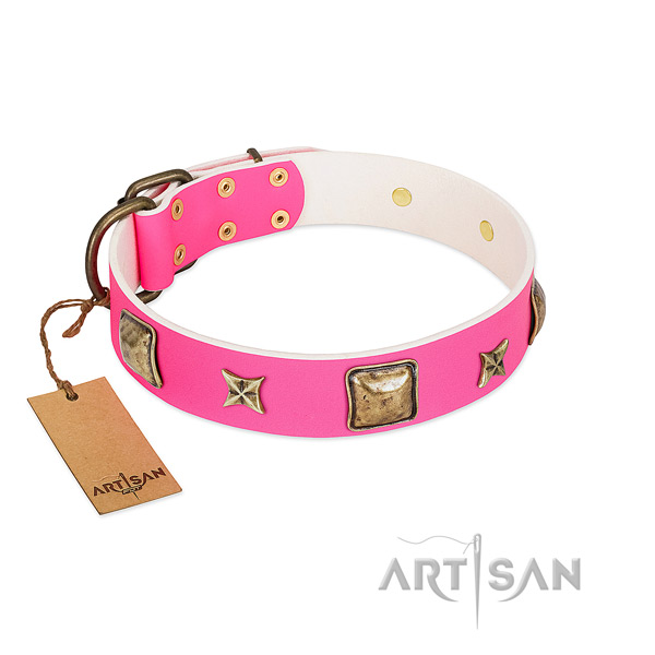 Genuine leather dog collar of quality material with remarkable adornments