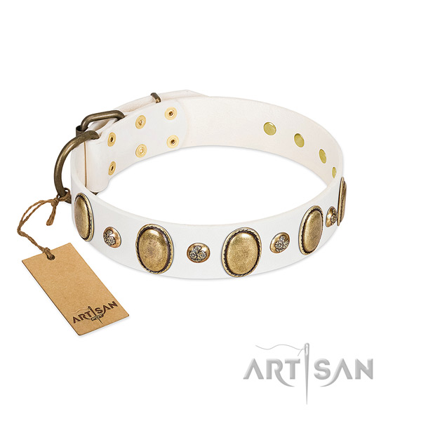 Genuine leather dog collar of best quality material with amazing studs