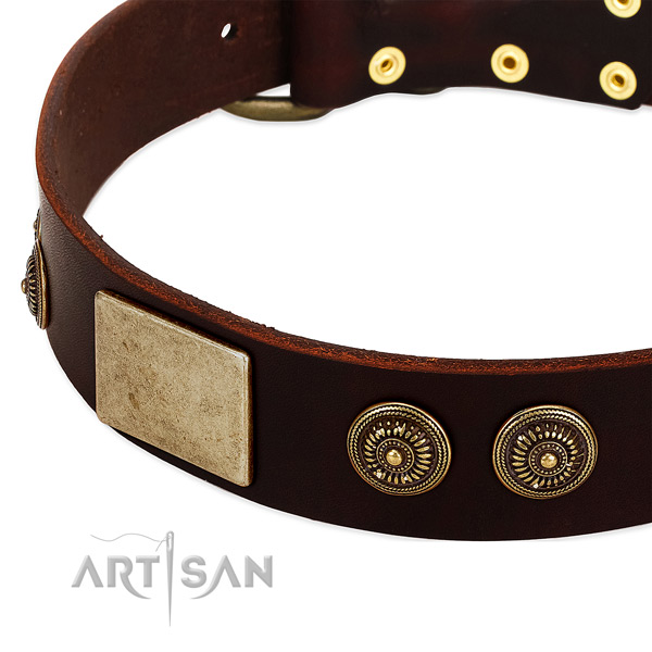 Rust resistant decorations on leather dog collar for your dog