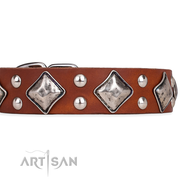 Genuine leather dog collar with unique rust-proof studs