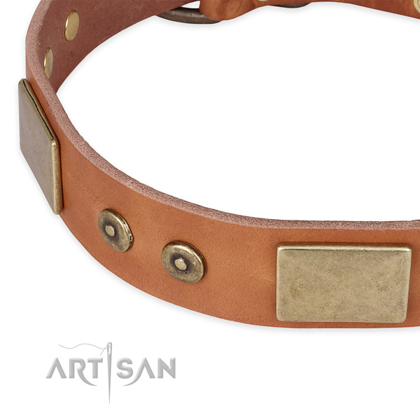 Rust-proof buckle on full grain leather dog collar for your four-legged friend