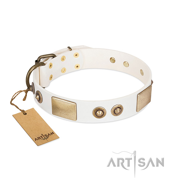 Reliable hardware on genuine leather dog collar for your canine
