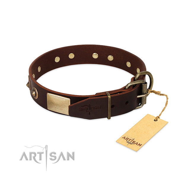 Corrosion proof buckle on daily walking dog collar