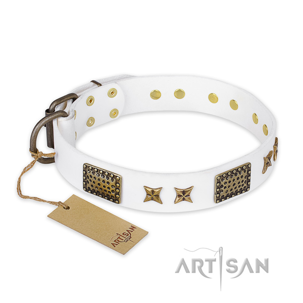 Embellished full grain leather dog collar with corrosion proof buckle