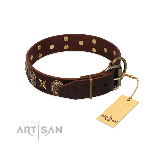 Durable embellishments on full grain natural leather dog collar for your canine