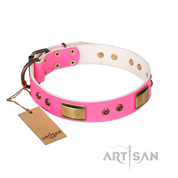 Unusual natural genuine leather collar for your doggie