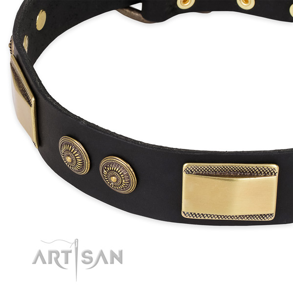 Decorated full grain leather collar for your impressive four-legged friend