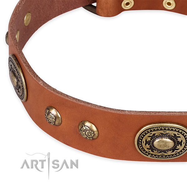 Stunning natural leather collar for your lovely dog