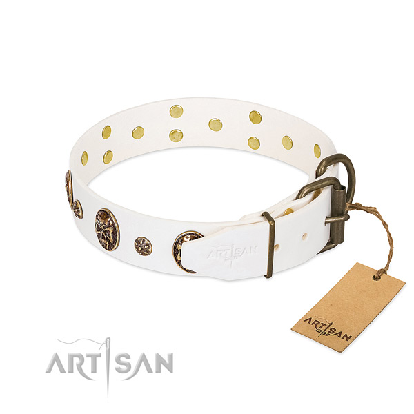 Corrosion resistant traditional buckle on natural genuine leather dog collar for your four-legged friend
