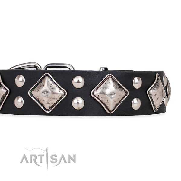 Natural leather dog collar with significant durable decorations