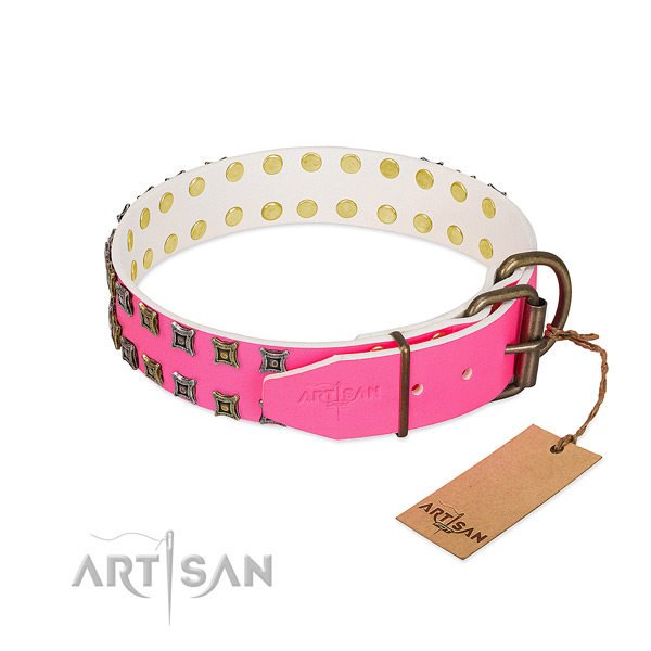 Full grain natural leather collar with amazing adornments for your canine