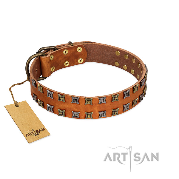 Gentle to touch full grain leather dog collar with decorations for your doggie