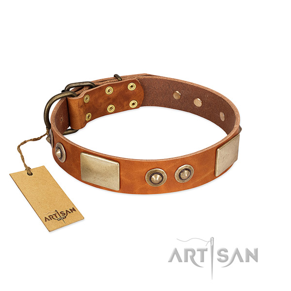 Easy wearing full grain genuine leather dog collar for walking your four-legged friend