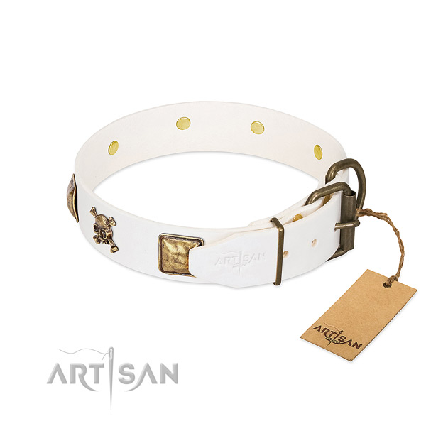 Remarkable natural leather dog collar with rust resistant embellishments