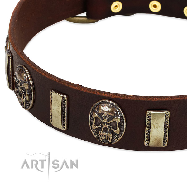 Reliable embellishments on genuine leather dog collar for your pet