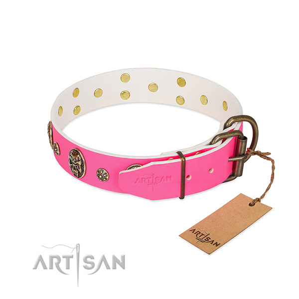 Rust resistant hardware on full grain leather collar for fancy walking your canine