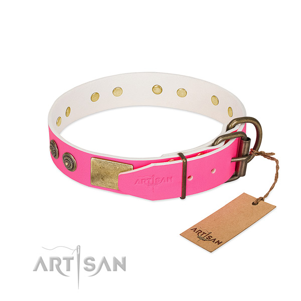 Durable hardware on full grain natural leather collar for walking your pet