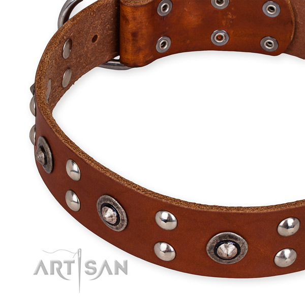 Genuine leather collar with durable buckle for your handsome canine