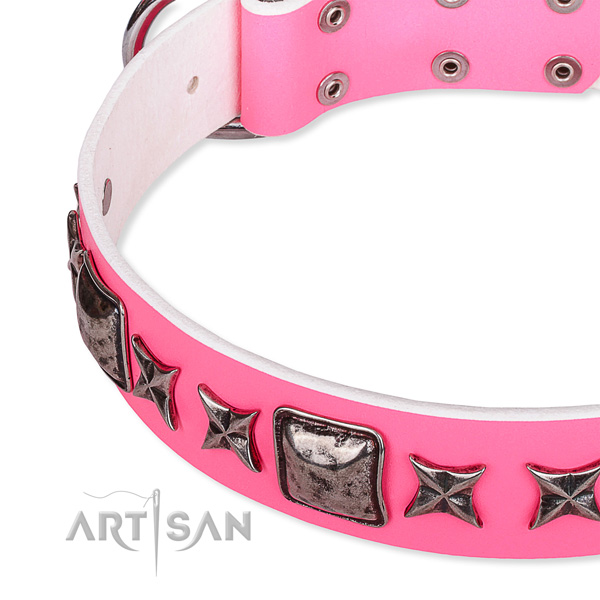Walking embellished dog collar of top quality full grain leather