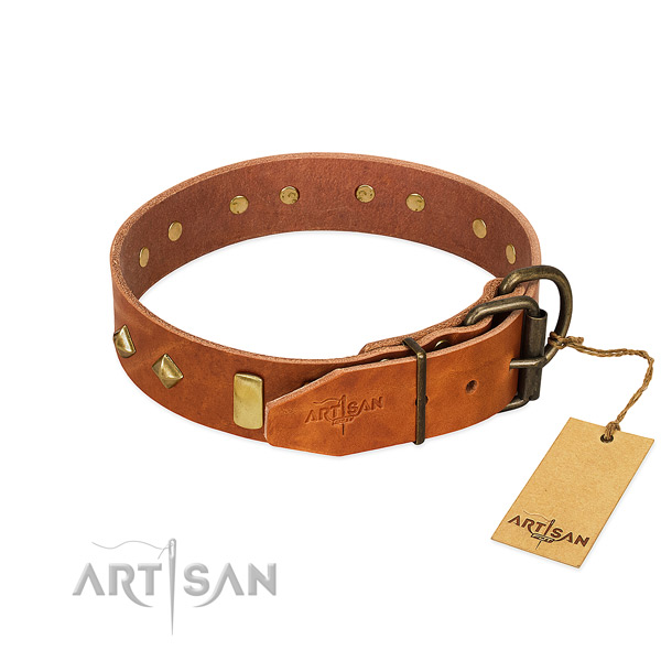 Fancy walking full grain genuine leather dog collar with impressive decorations
