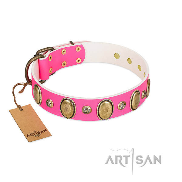 Full grain natural leather dog collar of top rate material with incredible adornments