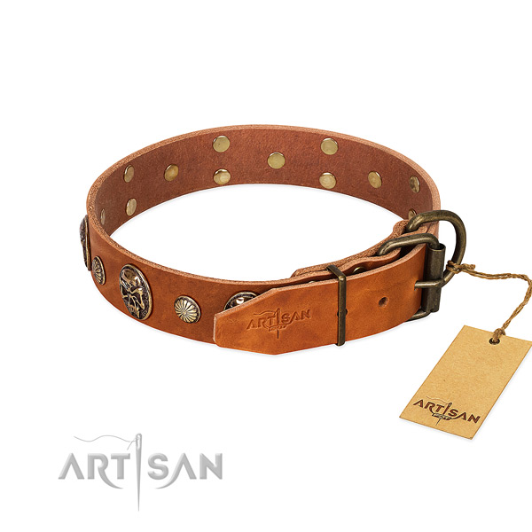 Rust-proof traditional buckle on natural genuine leather collar for fancy walking your doggie