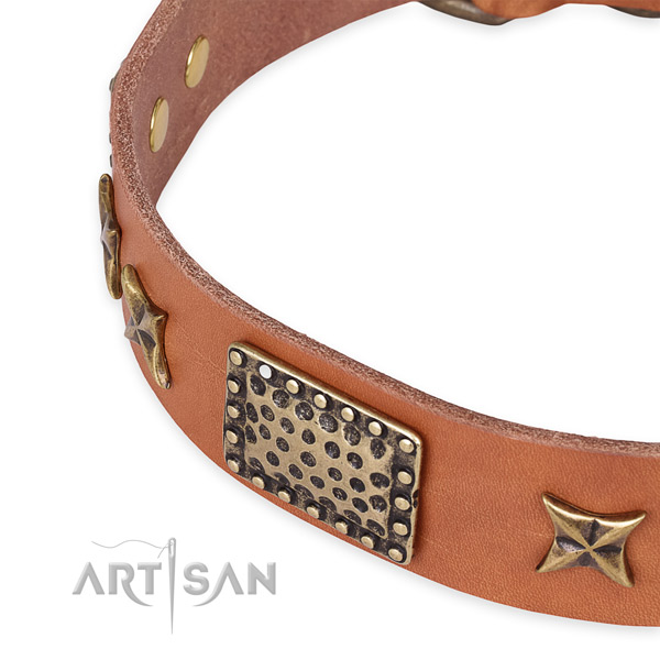 Natural genuine leather collar with corrosion resistant buckle for your handsome dog