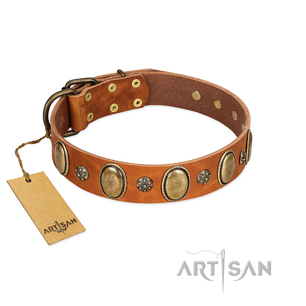 Stylish walking soft genuine leather dog collar with adornments