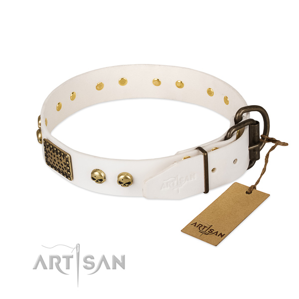 Easy wearing natural leather dog collar for basic training your pet
